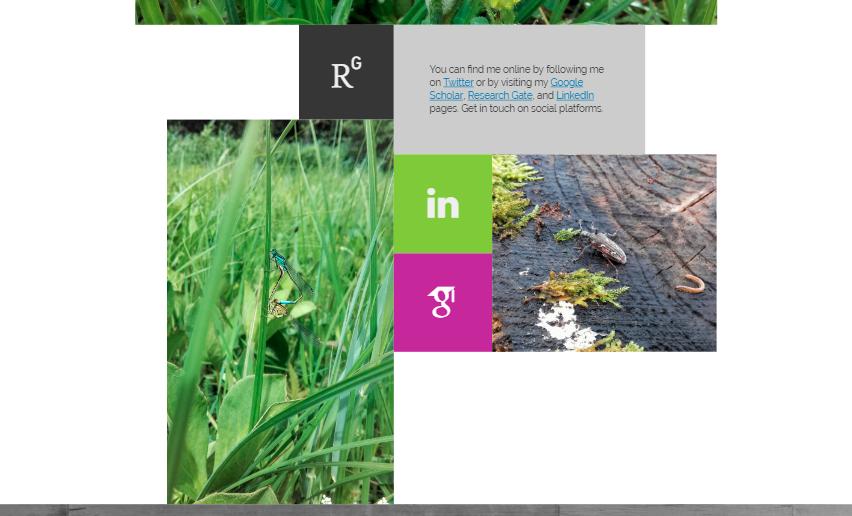 Academic CV web site in full-width desktop view